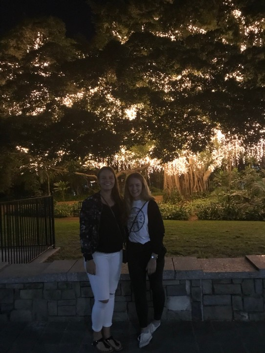Australien - Brisbane - Glowing in the dark 🌳💡 Be happy to meet you 👭