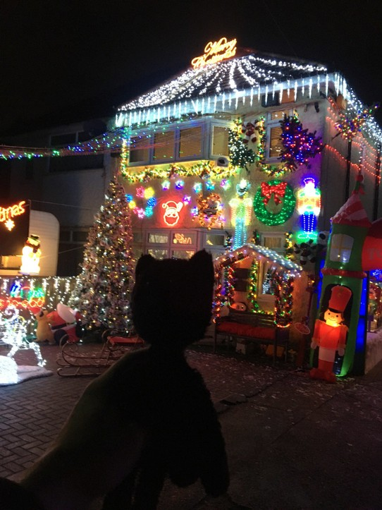 United Kingdom - London - Some people have crazy Christmas lights!