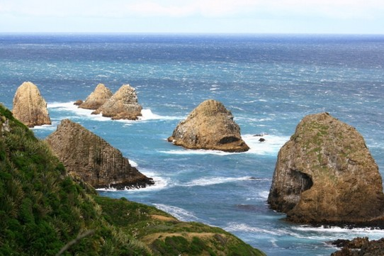 Neuseeland - Nugget Point -